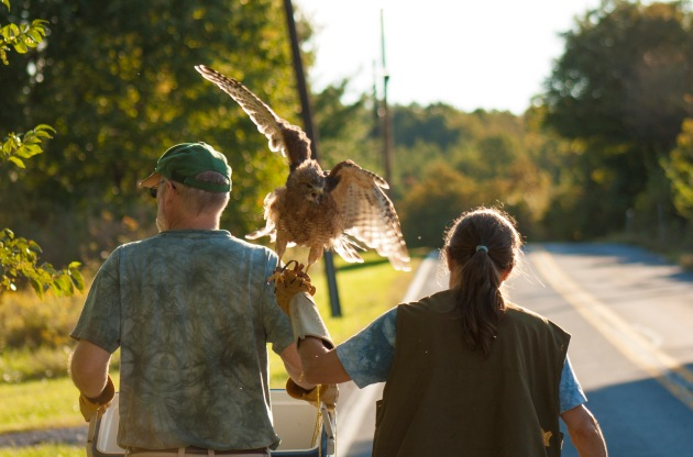 Owl Moon is a family effort. Suzanne and her husband Jan return from a session of creance flying. Photograph by Natasha Lewandrowski.