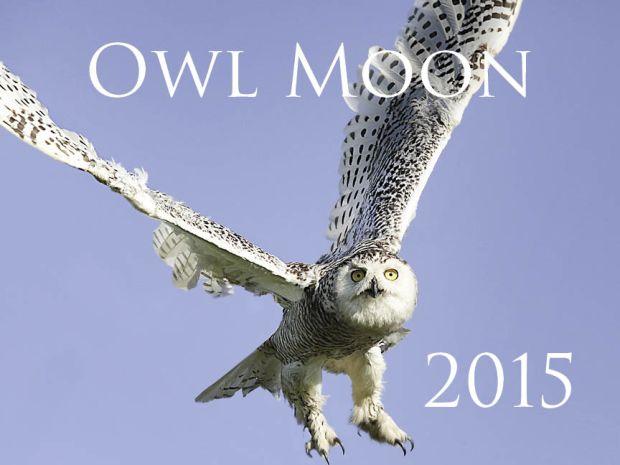 OwlMoon2015calendarJPGS